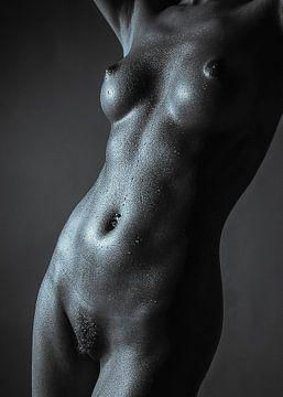 Fine Art Nude_2a von Anton Path