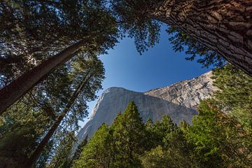 El Capitan Yosemite van Jeffrey Van Zandbeek
