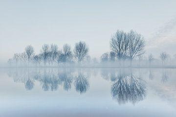 Winterlandschap met mist. van Bart van Dam