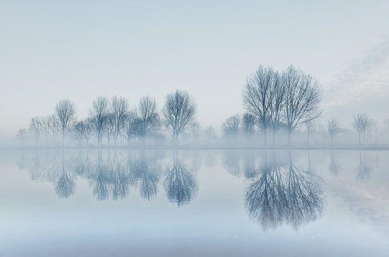 Winterlandschap met mist.