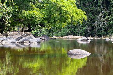 Spiegelbeelden (2) in de Sipaliwinirivier in Suriname van rene marcel originals