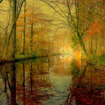 Waldsee von Vera Laake