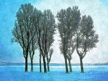 Winterbeeld Kralingse Plas von
