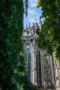 Romantisch doorkijkje op de Sint Jan Kathedraal in Den Bosch