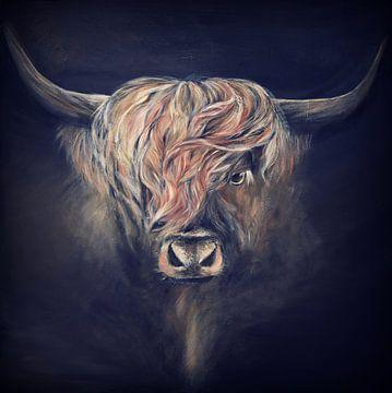 Highlander écossais sur Els Fonteine