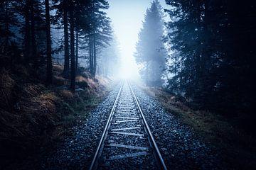 Flucht in den mystischen Harz van Oliver Henze