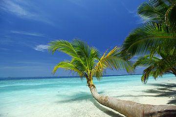 Tropisch eiland van Henny Hagenaars