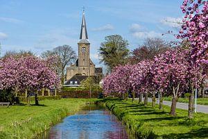 12 e eeuwse Willibrordkerk in Nederhorst den Berg, Wijdemeren, Noord Holland, Netherlands