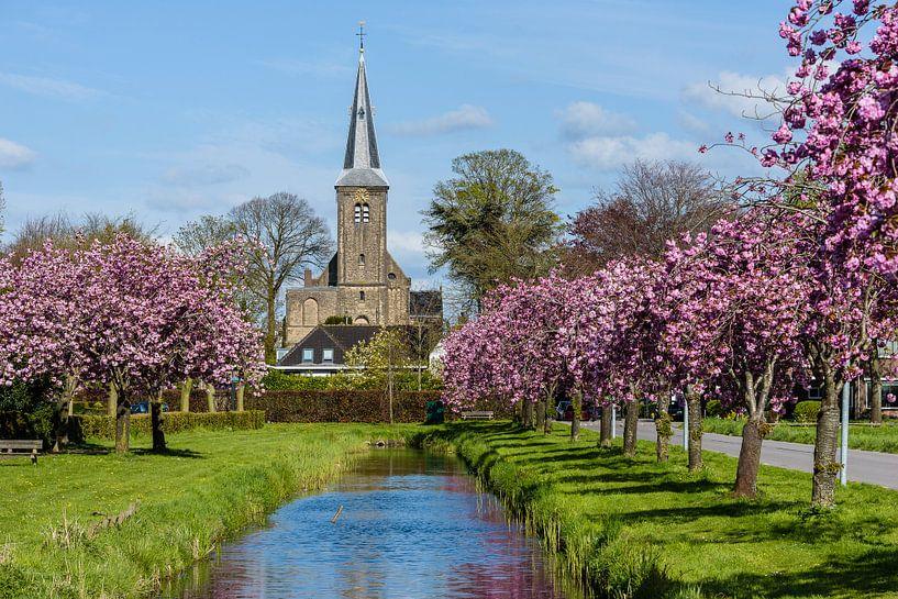12 e eeuwse Willibrordkerk in Nederhorst den Berg, Wijdemeren, Noord Holland, Netherlands van Martin Stevens