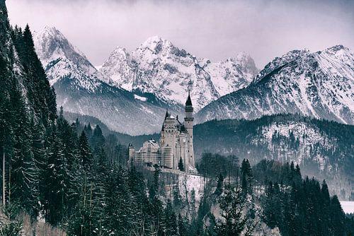 Winterliches Märchenschloss Neuschwanstein von Dennis Six