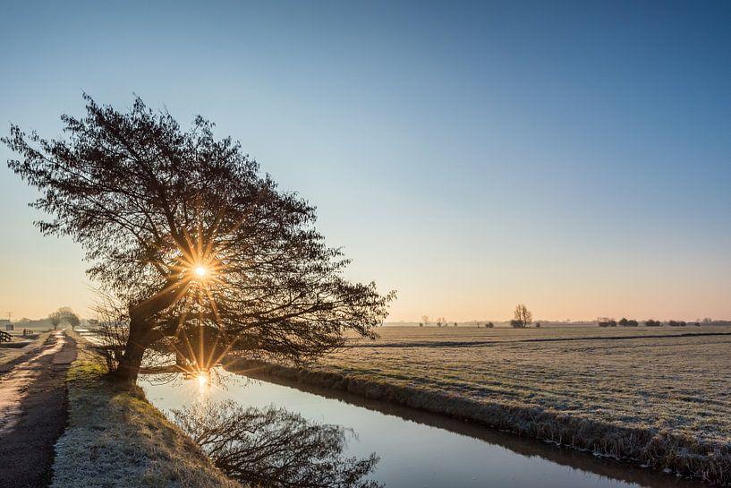 Winter im Polder von John Verbruggen