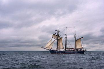 Voilier sur la mer Baltique au large de Warnemünde sur Rico Ködder