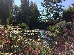 Ware inspiratie van Monet in zijn tuin in Giverny 1