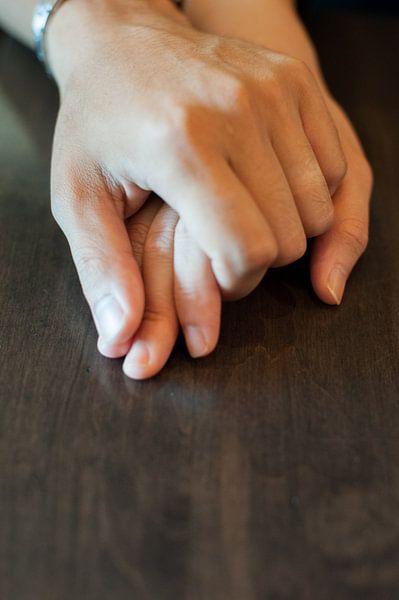 Hands van Jos de Boer