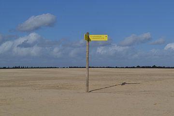 wegwijzer staat moederziel alleen in de Drunense duinen van tiny brok