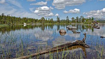 Norwegen, Naturreservat Gutulia van