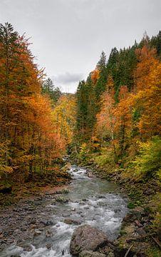 Couleurs d'automne le long de la rivière en Bavière sur Emile Kaihatu