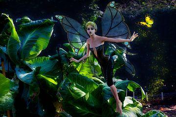 Garden Fairy with Butterfly - Fairy in de tuin