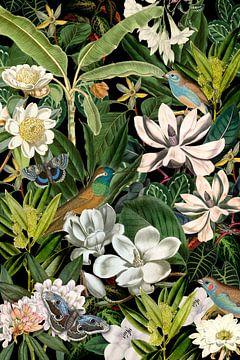 Das Versteck im Garten von christine b-b müller