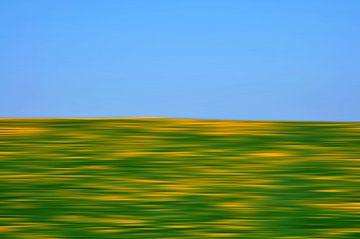 Frühling von Peter Bergmann
