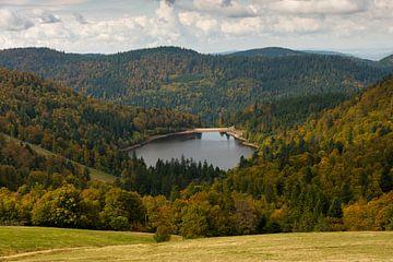 Lac de la Lande, Vosges van Wim Slootweg