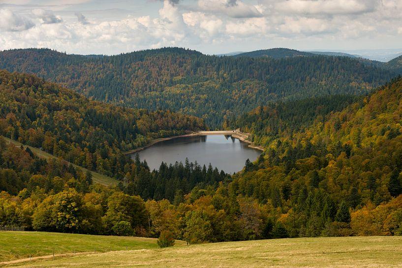 Lac de la Lande, Vosges von Wim Slootweg