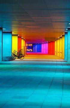 Nederlands Architectuurinstituut, Rotterdam von Andrew Chang