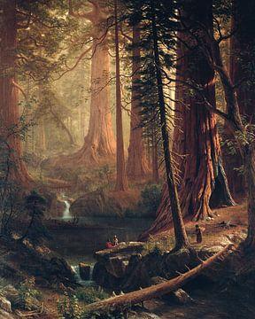 Albert Bierstadt. Gigantische Redwood bomen in Californië