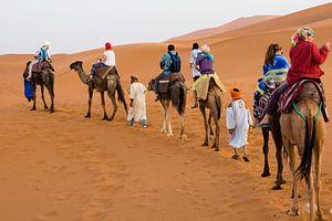 Karavaan in woestijn van