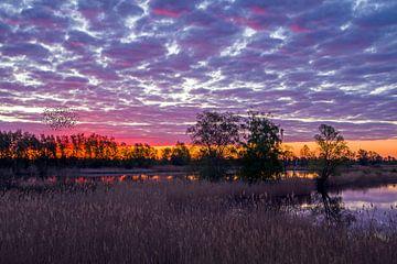 Sonnenaufgang im Osten von Heiko Lehmann