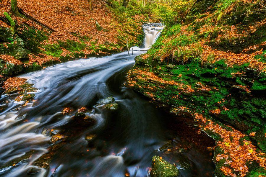 Beek met stromend water in de herfst