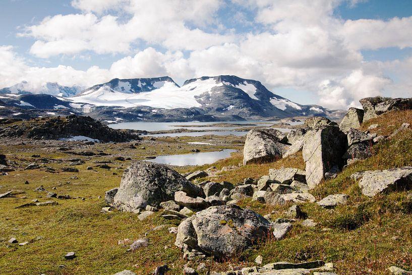Scandinavisch Berglandschap met rotsblokken van Klaas Hollebeek