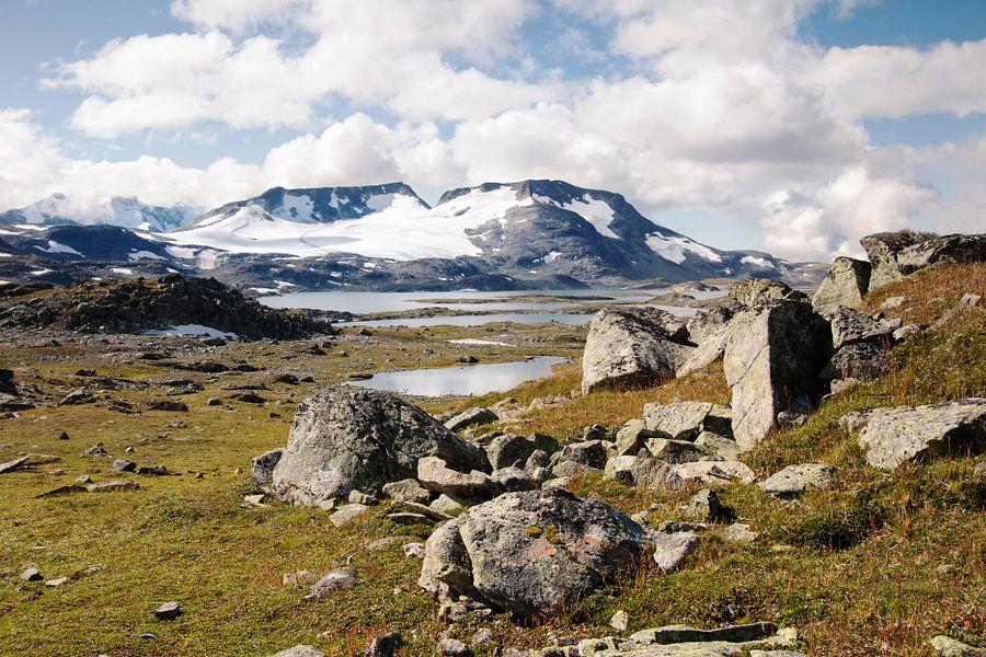 Berglandschap met rotsblokken
