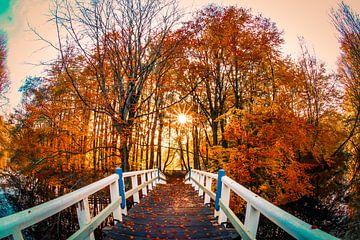 Herfst brug von Peter Heins