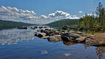 Norwegen. Naturreservat Gutulia. van