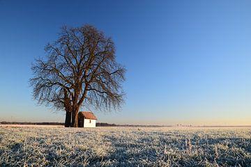 Kapel in bevroren Limburgs Landschap von Maarten Honinx