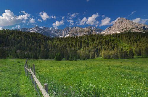 Austria Tirol van