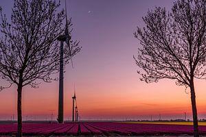 Wind molens tijdens de zon onderganing van Michael Verbeek