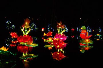 Flowers light van Jan Pott