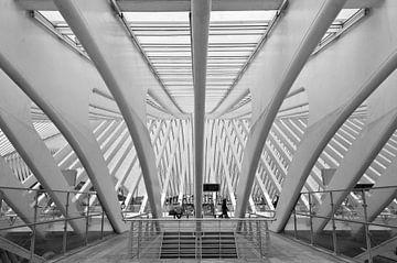 Station Luik van