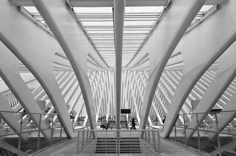 Station Luik van Ooks Doggenaar