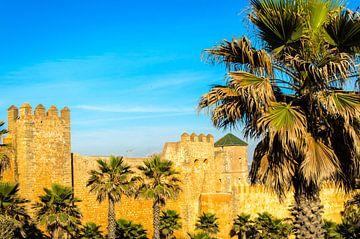 Stadtmauer mit Palmen in Rabat Marokko von Dieter Walther