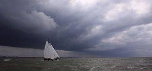 Lemsteraak sailing home