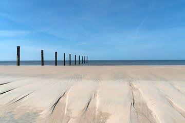 Strandreservat Noordvoort von Jeanette van Starkenburg