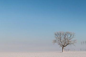 verstild winterlandschap sur Cees van Ginkel