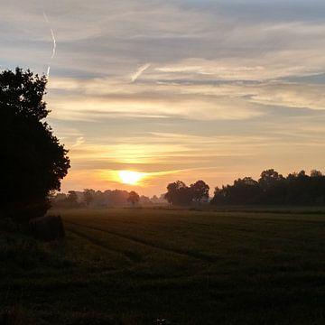 Sonnenaufgang von Meta van Saus