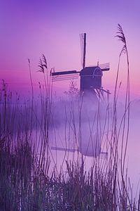 Paarse molen van Halma Fotografie