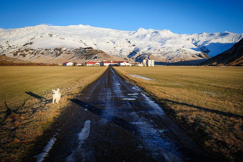 IJslandse boerderij sur Sjoerd Mouissie