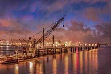 Kade met kraan en container terminal tijdens zonsondergang, Antwerpen van Tony Vingerhoets
