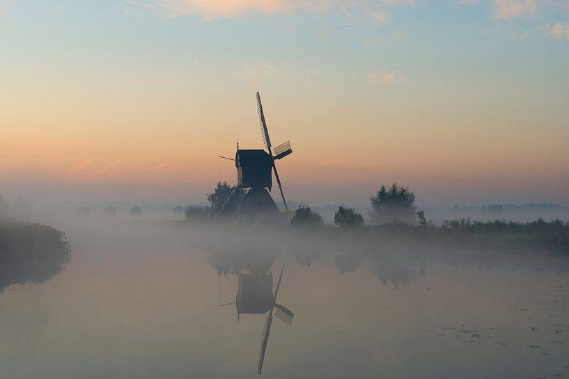 A small world van Aline van Weert
